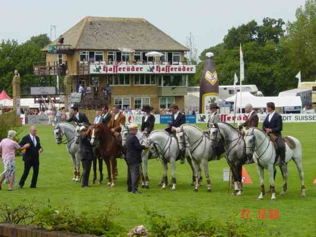 Trade Stands Hickstead : Lusitanos at hickstead 2003